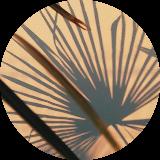 cagla22-5puantiye-tarafsiz-kozmetik-rehberi